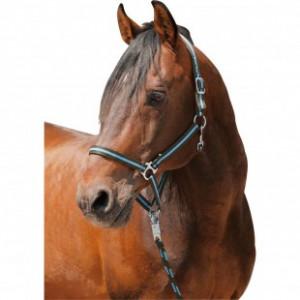 Комплект Чикаго купить в интернет магазине конной амуниции