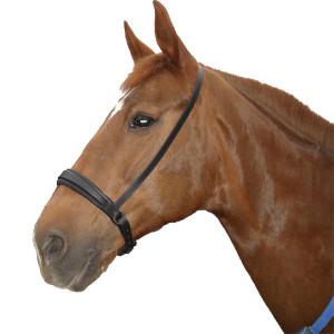 Капсюль немецкий купить в интернет магазине конной амуниции