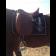 Седло Диамант с наружными упорами купить в интернет магазине конной амуниции 11608